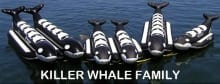 Whale-Ride-group-web-photo
