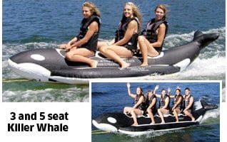Recreational killerwhales